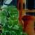 http://www.meller-art.co.il/Assets/Images/1/2/Small/geranium2.jpg