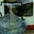 https://www.meller-art.co.il/Assets/Images/1/2/Small/kvmkvm.jpg