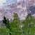 https://www.meller-art.co.il/Assets/Images/1/4/Small/gbavt.jpg