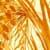https://www.meller-art.co.il/Assets/Images/2/7/Small/snsnha_002.jpg