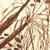 https://www.meller-art.co.il/Assets/Images/2/7/Small/snsnha_004.jpg