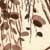 https://www.meller-art.co.il/Assets/Images/2/7/Small/snsnha_3.jpg
