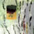 https://www.meller-art.co.il/Assets/Images/3/13/Small/nvp_irvk2.jpg